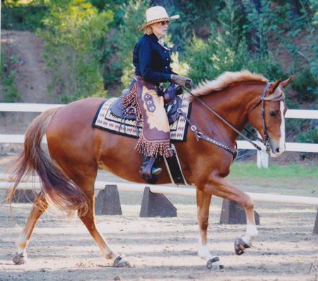 Lesla Bong riding Cloud a 3 year old Thoroughbred/Trakehner  cross.